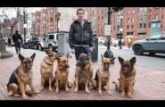 Ψιθυρίζοντας σε έξι σκυλιά